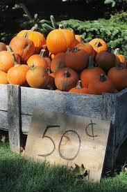 Hartsburg Pumpkin Festival 2015 Dates by 201 Best Pumpkins And Gourds Images On Pinterest Fall Autumn