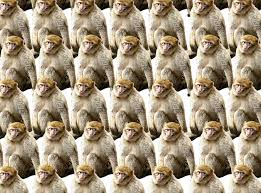 An Infinite Number Of Monkeys Packed Closely Together