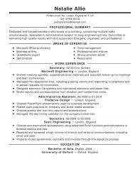 Professional Resume Sample Lovely Summary Fresh For Of Summ Medium Size