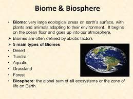 Earth Floor Biomes Desert by Bell Ringer Feb 11 Th 2015 Brainstorming List Everything You