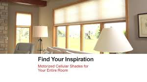 Bali Motorized Blinds Troubleshooting – Elegantgardens.gq How We Decided On Window Coverings For The Home Office Chris Loves Bali Motorized Blinds Troubleshooting Ezlightingml 3 Wishes Coupon Code 50 Off 1 Coupons June 2019 Cellular Repair Wwwselect Blindscom Wwwcarrentalscom Zenni Optical Coupon June 2013 Hunter Douglas Blindstercom Reviews 3256 Of Sitejabber 60 Skystream Promo Codes August 55 Blindster Coupons Promo Discount Codes Wethriftcom