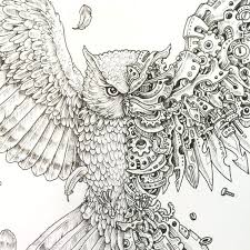 Colorama Coloring Book Owl Enchanted Forest Creative Haven Owls Pdf Preview Expect Dropping