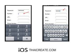 iOS iPhone Hide Input Keyboard and Validate Text Field Password