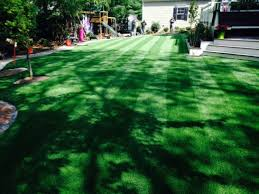 Carpet Grass Florida by Artificial Grass Palm Bay Florida Indoor Putting Green Backyard