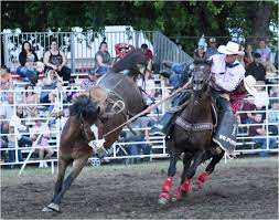 Cool Vantage Wrangler Jeans Perform Well Under Pressure | Cowboy ... Rodeo Champions Driver Does Much More Than Drive Members Photo Gallery 43rd Annual Cherokee Chamber Of Commerce Prca Wgrzcom Star Tries To Rebound From Injury 2017 Carlin Family Produced By Vl Productions And Timeline Buffalo Championship Barnes Sons Company Home Facebook Pit Boys News North Coast Journal Jake Clay Obrien Cooper At The 2014 Wrangler National Reaching For Success With The Team Roping 7x World Champion Saddle Poster Carson Valley Times American Cowboy Western Lifestyle
