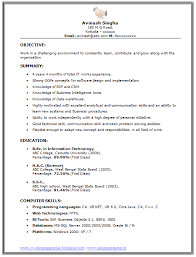 Professional Curriculum Vitae Resume Template For All Job Seekers Sample Of An Excellent BSC Information Technology IT Experience
