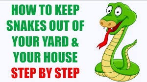 How To Keep Snakes Out Of Your Yard | How To Keep Snakes Away From ... Diamondback Water Snake Indiana 1 Yard Long Youtube Snake Trap Cahaba Ewww Snakes 6 Tips To Keep Them Away From Your Home How A 14 Steps With Pictures Wikihow In The Duck House 9 Tips Help Repel Snakes Fresh Eggs Best Way Ive Found Yet Deal Problems Backyard Removal Wildlife Services Of South Florida Catch Deadly Safely Out Louisiana Department And Fisheries