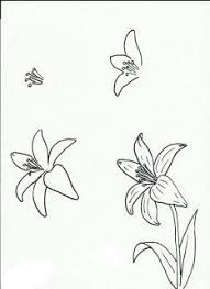 Art Class Ideas How To Draw Lilies Forget Me Nots Other Flowers
