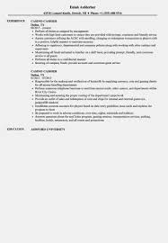 10 Other Names For Cashier On Resume | Resume Samples How To Write A Perfect Cashier Resume Examples Included Picture Format Fresh Of Job Descriptions Skills 10 Retail Cashier Resume Samples Proposal Sample Section Example And Guide For 2019 Retail Samples Velvet Jobs 8 Policies And Procedures Template Inside Objective Huzhibacom Rponsibilities Lovely Fast Food