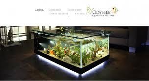 aquarium dans le mur aquarium mur d eau et mur végétal sur mesure 06 décoration