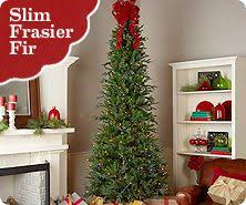 Bethlehem Lights Indoor Ready Shape Pre Lit Slim Frasier Fir Tree