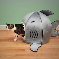 maisons et jeux pour chats cat