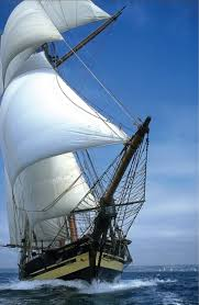 Hms Bounty Sinking Report by 544 Best Sailing Ships Images On Pinterest Sailing Ships Tall