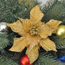What Is The Best Christmas Tree Variety by Catchy Collections Of Best Christmas Tree Variety Catchy Homes