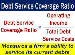 Define Annual Sinking Fund by Debt Service Coverage Ratio Definition And Meaning