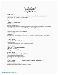 No Experience Resume Template Cna Examples With Rn Bsn Awesome Nurse