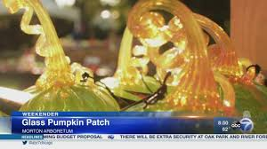 Highwood Pumpkin Festival 2017 by Northern Suburbs Of Chicago News Abc7chicago Com