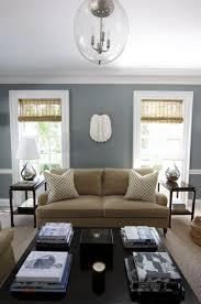 mink brown sofa design ideas