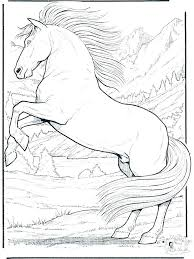 Printable Horse Coloring Pages Detailed Horses Realistic