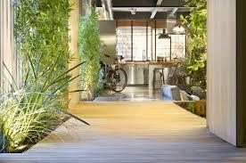 gräser pflanzen hübsche arten für innenbereich balkon