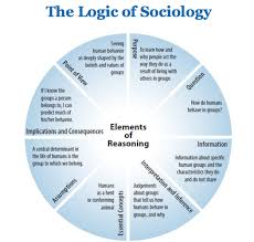 The Logic of Sociology Analytic Thinking