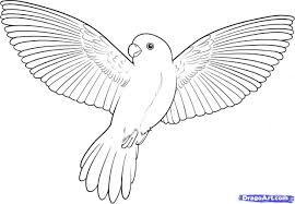 Bird In Flight Drawing Simple Pencil Drawings Of Flying Birds Coloring Pages X