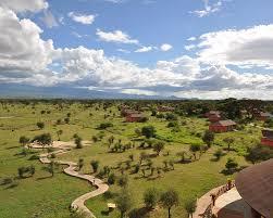 100 Flying Cloud Camp Safarilink2 Nights Kilima Safari Package Amboseli