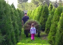 Photo Family Christmas Tree Farm