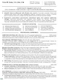 Resume Summary Examples For Sales Executive Good Example Of A Professional Section Senior Resum
