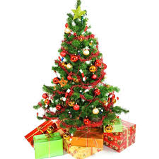 Types Of Christmas Tree Lights by Different Christmas Tree Types Christmas Lights Decoration