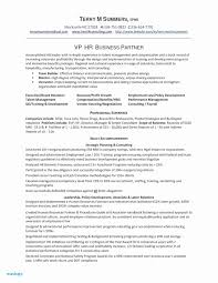 Scrum Product Owner Resume Beautiful Master Best Example Of