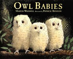 Owl Babies! Great Children's Book About Three Owlet Siblings ... Chris Eastern Screech Owl Nest Box Cam For 2001 Three Cute Barn Owlets Getting Raised In Kodbakkam Chennai 077bojpg Needle Felted Owlet Baby Outdoor Alabama Escapes And Photography Owls Owlets At Charlecote Park Robin Loznak Barn Owls Oregon Overheated Chicks Rescued Hungry Project 132567 2568 2569 2570 The Wildlife Center Wallpaper Archives Trust Young Thrive On Harewood Estate House By Michael A Eccles