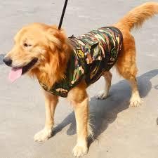 dog big clothes promotion shop for promotional dog big clothes on