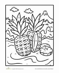 First Grade Holidays Seasons Worksheets Pineapple Coloring Page