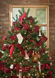 Types Of Christmas Trees To Plant by Best 25 Real Christmas Tree Ideas On Pinterest Cute Christmas