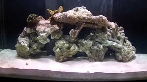 How To Aquascape A Reef Aquarium - YouTube Mongolian Basalt Columns Set Of 3 Landscape Fountain Kit The Pond Guy Greg Wittstock Aquascape Founder Fire Fountains Inc Company Saint Charles Il Aqua Video Facebook Youtube Designs For Your Aquarium Room Fniture Filters And Filter Systems Archives Bjl Aquascapes Colts Neck New Jersey Unlimited Cci Client For A Eclectic With Contractor