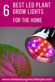 Best LED Plant Grow Lights For Home Use