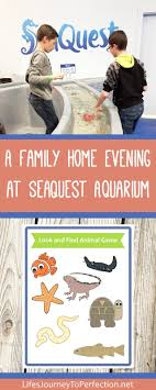 Life's Journey To Perfection: A Family Home Evening At SeaQuest Aquarium Kids And Sharks A Fun Morning At Seaquest Las Vegas Vintage Blue Under The Sea Interactive Aquarium Discount Tickets New Attraction Comes To Planned For River Ridge Mall In The Salt Project Things Do Planned Aquarium Folsom Faces Community Opposition Deal Now Valid All Summer Admission Tickets Or Ultimate Experience Package Certifikid Seaquests Problems Extend Beyond Discount Opening United Moms Network Quest Coupons Mk710 Deals