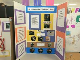 Science Fair Ideas 50