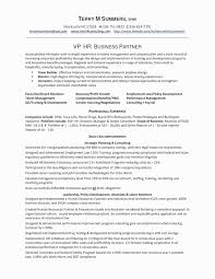 Sample Customer Service Supervisor Resume Awesome Summary Examples For New Jpg
