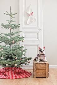 Boy Scout Christmas Tree Recycling San Diego by Best 25 Silvertip Christmas Tree Ideas On Pinterest Traditional