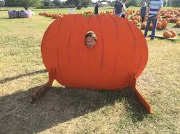 Pumpkin Patch College Station Tx by Domesticated Combat Boots October 2016