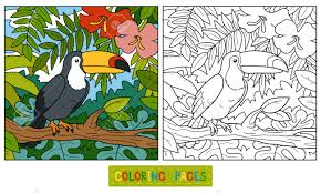 Coloring Book Education Game For Children Toucan And Background Stock Vector