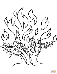 The Burning Bush Coloring Page Free Printable Pages