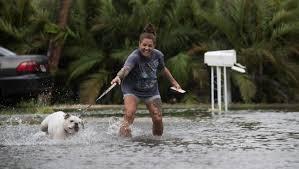 Pumpkin Patch Bonita Springs Fl by Tropical Storm Emily Power Outages Rain Fishermen Rescued