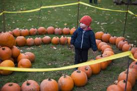 Pumpkin Farms In Flint Michigan by Ann Arbor Area Halloween 2015 Your Guide To Trick Or Treat Times