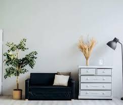 luftfeuchtigkeit für pflanzen erhöhen 10 tipps liste