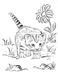 Striped Kitten Coloring Pages