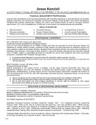 Resume Templates For Finance Professionals 52 New Cv Hd