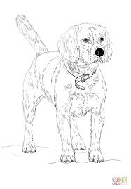 Click The Beagle Coloring Pages